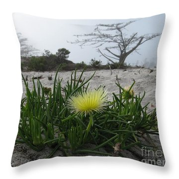 Iceplant Bloom On Carmel Dunes Throw Pillow