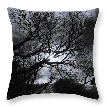 Ichabod's Pathway Throw Pillow by Donna Blackhall