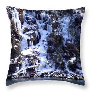 Icicle House Throw Pillow by Barbara Griffin