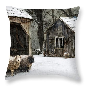 Icing On The Capes Throw Pillow