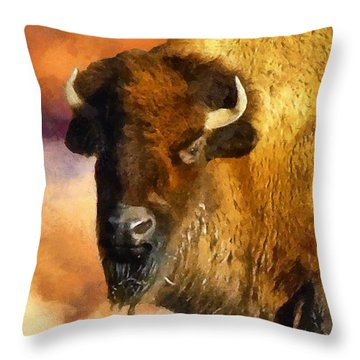 Icon Of The Plains Throw Pillow