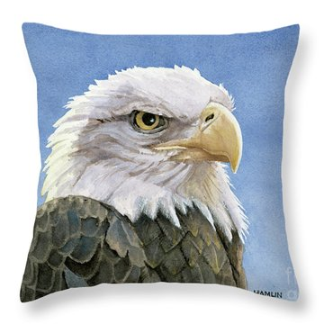 Icon Throw Pillow by Steve Hamlin