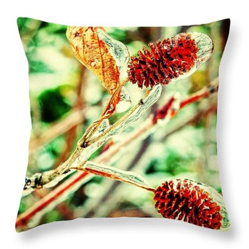Throw Pillow featuring the photograph Icy Cover by Zinvolle Art