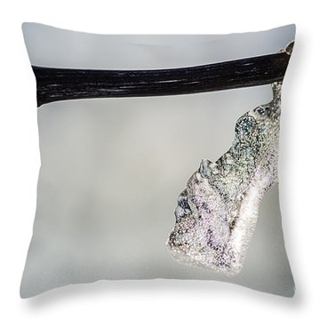 Icy Formation Throw Pillow