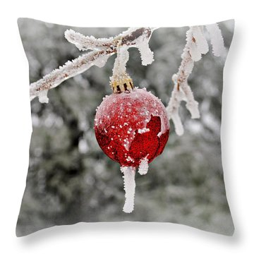Icy Glazing Throw Pillow