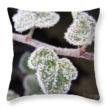 Icy Ivy Throw Pillow by Terri Waters