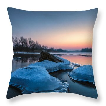 Icy Jellyfish Throw Pillow by Davorin Mance