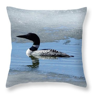 Icy Loon Throw Pillow by Steven Clipperton