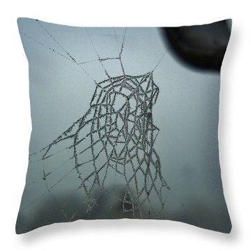 Throw Pillow featuring the photograph Icy Spiderweb by Ramona Matei