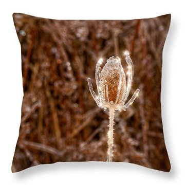Icy Thistle Throw Pillow