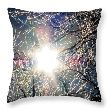 Icy Web Throw Pillow