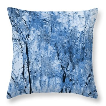 Icy Winter Throw Pillow by Kume Bryant