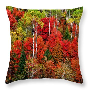 Idaho Autumn Throw Pillow