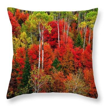 Idaho Autumn Throw Pillow by Greg Norrell