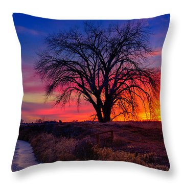 Throw Pillow featuring the photograph Idaho Winter Sunset by Greg Norrell