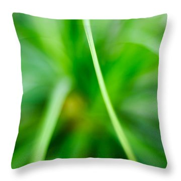 Identity Throw Pillow by Syed Aqueel