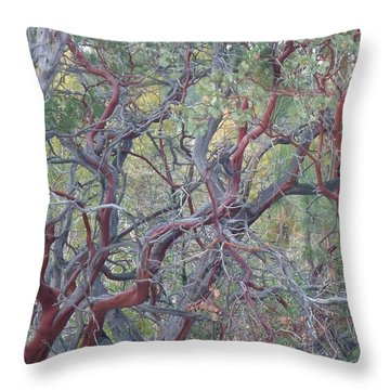 Throw Pillow featuring the photograph Idyllwild Red Tree by Nora Boghossian