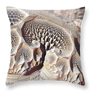 If I Only Had A Brain Throw Pillow