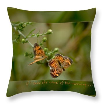 If I Take The Wings Of The Morning Throw Pillow by Denise Beverly