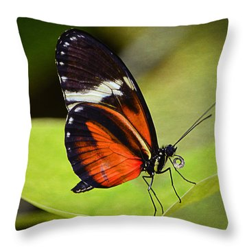 If I Were A Butterfly... Throw Pillow