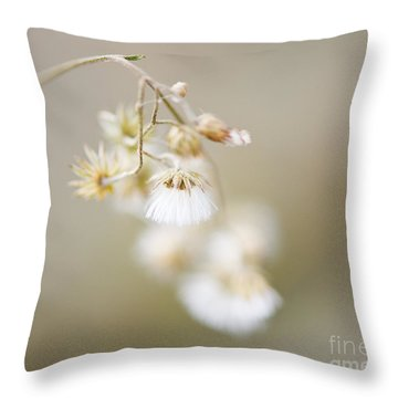 If Only I Am ..... Throw Pillow