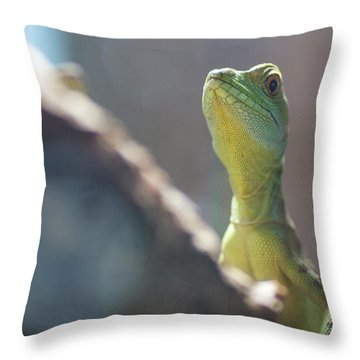 If Only I Could Find It Throw Pillow