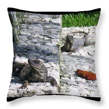 Iguana Bask In The Sun With You Throw Pillow by Patti Whitten