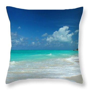 Iguana Island Caribbean Throw Pillow