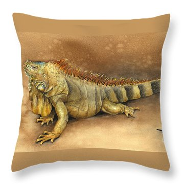 Iguana Throw Pillow by Nan Wright