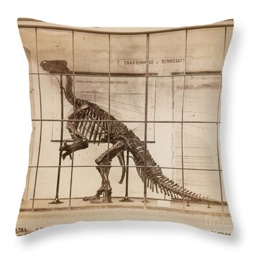 Iguanodon Skeleton Mesozoic Dinosaur Throw Pillow by Science Source
