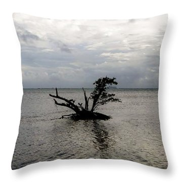 Ikebana Sunset Throw Pillow by Amar Sheow