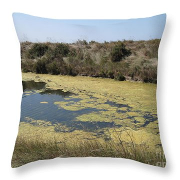 Ile De Re - Marshes Throw Pillow