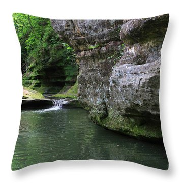 Illinois Canyon May 2014 Throw Pillow