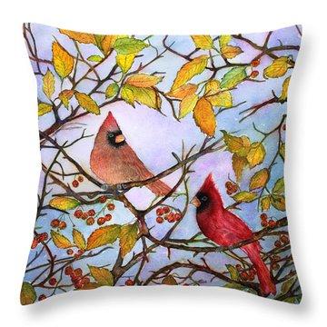 Illinois Cardinals  Throw Pillow