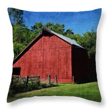 Illinois Red Barn 2 Throw Pillow