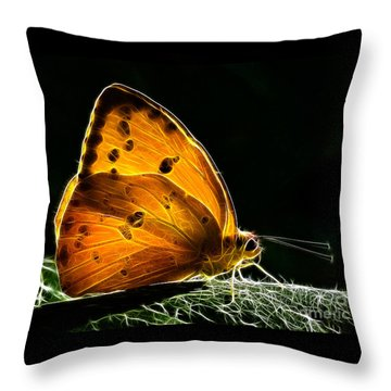 Illuminated Butterfly Throw Pillow by Alice Cahill