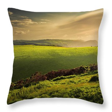Illuminated Evening Landscape North Devon Throw Pillow by Dorit Fuhg