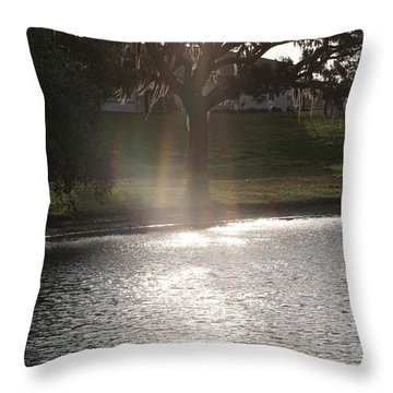 Illuminated Tree Throw Pillow