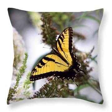 Illuminating Throw Pillow by John Freidenberg