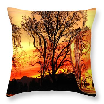 Throw Pillow featuring the photograph Illusion by Joyce Dickens