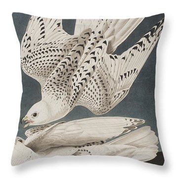 Illustration From Birds Of America Throw Pillow by John James Audubon