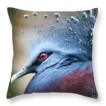 Throw Pillow featuring the photograph Illustrious by Heather King