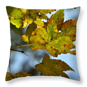 Ilovefall Throw Pillow by JAMART Photography