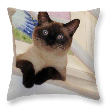 I'm Adorable Throw Pillow