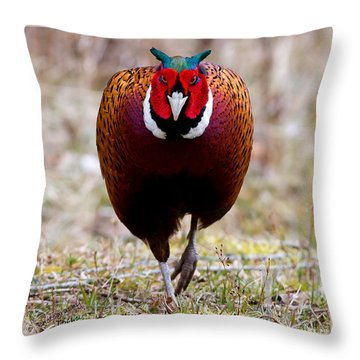 I'm Coming To Get You Throw Pillow