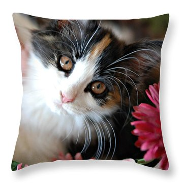 I'm Just So Adorable Throw Pillow by Kenny Francis