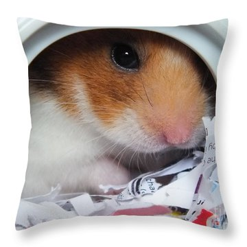 Throw Pillow featuring the photograph I'm Keeping My Eye On You by Vicki Spindler
