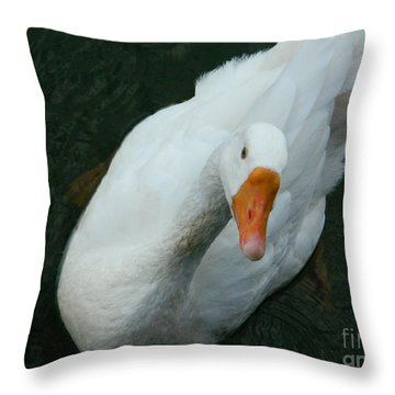 Throw Pillow featuring the photograph I'm Lookin' At You by Emmy Marie Vickers