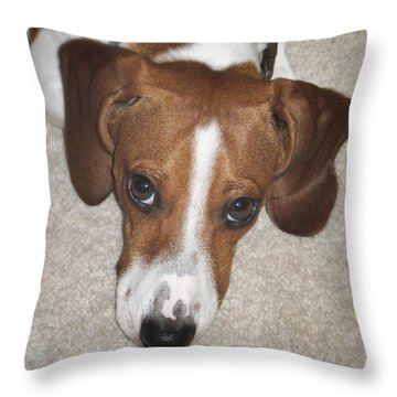 I'm Sorry Throw Pillow by David and Carol Kelly