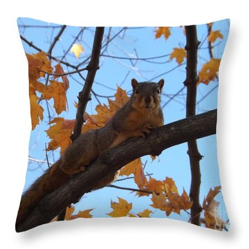 I'm Watching You Throw Pillow by Sara  Raber